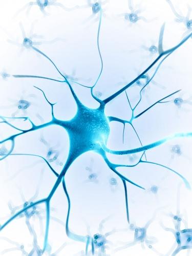 Terapia-Neural (intensivo)