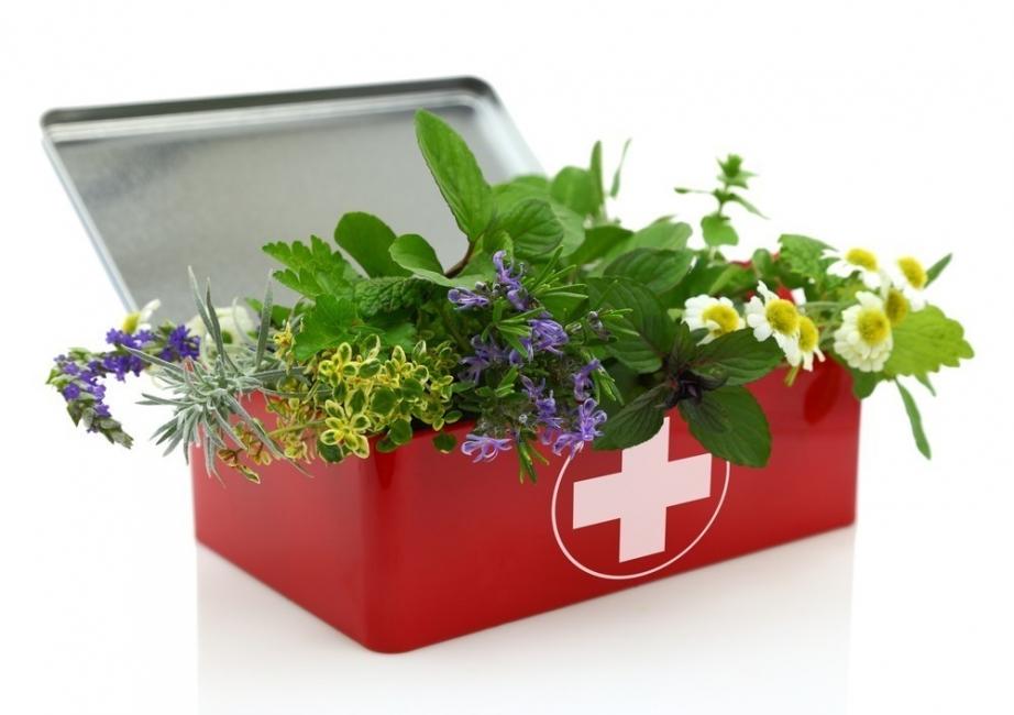 La herbolaria y su botiquín de plantas medicinales